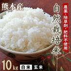 完全無肥料 自然栽培米 ヒノヒカリ 10kg(5kg×2) 29年産 農薬化学肥料不使用 放射能不検出 白米・玄米 選べます 九州 熊本 米