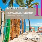 著作権フリー音楽【商用利用可・店内専用BGM】Hawaiian music1 -Papalina Lahilahi-(4019)