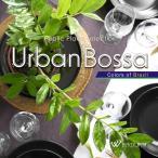 BGM CD 著作権フリー 店内 音楽 アーバンボサ -Colors of Brazil -4078