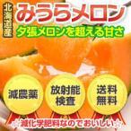 三浦さんが育てた北海道の極上みうらメロン優品3.2kg(1.6kg×2) 減農薬 放射能検査済
