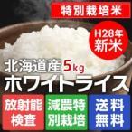 送料無料 北海道産 特Aのおいしいお米 ホワイトライス特別栽培米 5kg 無洗米・玄米・白米から選択 放射能検査済