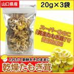 たもぎ茸 たもぎたけ 乾燥たもぎ茸 タモギダケ 20g×3袋 無添加 国産 日本製 乾燥 黄金たもぎ茸 黄金タモギタケ 健康食品 健康キノコ