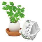 聖新陶芸 エッグリング エコフレンドリー イタリアンパセリ 植物 グリーン 栽培セット ガーデニング プチプラ ギフト 景品 プレゼント