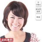 医療用 ウイッグ ・ 上品さがサラリと香る美人度UPのスタイル!女性ウィッグ 耐熱ウィッグ フルウィッグ 医療用 ファッション用   IH1003-4