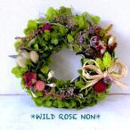 wildrosenon_preservedflowerooo9