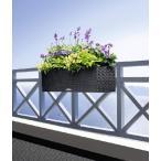 ハンギングプランター50サイズ 灌水装置 天然軽石付き