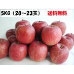 送料無料 青森県産サンふじ 家庭用 5kg(20〜23玉入り)