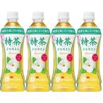 ショッピング特茶 送料無料 サントリー 特茶 ジャスミン  (特定保健用食品) 500ml PET×24本(1ケース)    手売り用