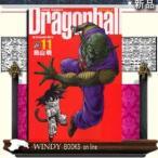 ドラゴンボール  完全版  11