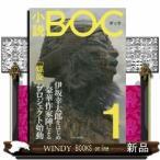 小説BOC    1