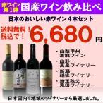 国産ワインセット 日本全国 赤ワインセット4本 Ver.1