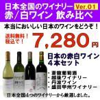 国産ワインセット 日本ワイン全国 赤白ワインセット Ver.1