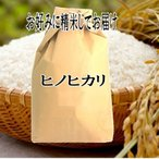玄米仕立 滋賀県産 ヒノヒカリ ひのひかり 令和元年産 玄米5kg お好みに精米してお届け 送料無料 一部除く