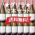 送料無料 ダリラ 2015 イタリア シチリア州 辛口 白ワイン 12本セット