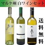 ショッピングセット 送料無料 イタリア マルケ白ワインセット