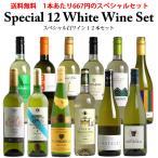 (レビューを書いてオマケをGET) (送料無料) ワインセット 第34弾 スペシャル白ワイン12本セット(白12本) 同梱不可