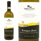 イタリアで一番最初にDOCGへ昇格した白ワイン!