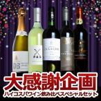 ワインセット 大感謝企画 高級メドック金賞ワイン入り! ハイコスパワイン飲み比べ スペシャルワイン5本セット 送料無料