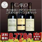 ワインセット 秋の夜長にボデガス・カロのこだわり赤ワイン3本セット 送料無料&代引き手数料無料