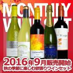 うきうきマンスリーワインセット 9月は秋の季節に楽しむ欲張りワインセット 送料無料