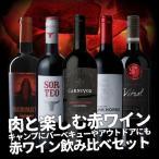 送料無料 赤ワインセット 肉と楽しむ赤ワイン! キャンプにバーベキューやアウトドアにも! 赤ワイン飲み比べセット
