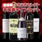 ワインセット 初級編 うきうきセレクト 辛口赤ワイン飲み比べセット 送料無料