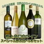 ワインセット ソムリエが選ぶ世界の白ワインが味わえる 極上辛口白ワイン スペシャル飲み比べ5本セット 送料無料 同梱不可