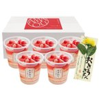 (父の日専用ギフト)博多あまおう たっぷり苺のアイス