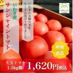 ギフト トマト 大玉トマト1.5kg箱(サンシャイントマト) お取り寄せ野菜 ワンダーファーム