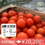 定期便 6ヶ月コース 中玉カンパリトマト詰め合わせ3kg