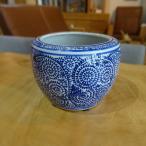 蛸唐草 ミニ火鉢 めだか アンティーク 水鉢 陶器