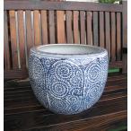 蛸唐草  火鉢 大  めだか メダカ鉢 アンティーク 水鉢 陶器 観葉植物 アジアン 和モダン