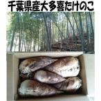 wood-toy_takenoko002