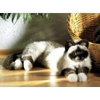 ケーセン ねそべり猫 ヒマラヤン 【ケーセン 動物 出産祝い 誕生日 赤ちゃん ベビー 1歳 2歳 3歳 ぬいぐるみ】