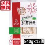 送料無料 はくばく 胚芽押麦スタンドパック(45g×12P)  ×12個 スティックパック 押し麦