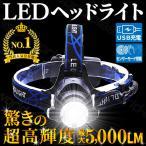 ヘッドライト LED ヘッドランプ 懐中電灯 アウトドア LEDライト 登山 釣り 充電式