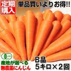ジュース用に最適 定期購入 産地が選べる無農薬にんじんB品5キロ×2回 計10キロ 送料無料 訳あり