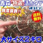 送料無料 ホタテ 殻付き 活ほたて 大サイズ2キロ 青森 陸奥 貝柱が美味 (約10枚前後入り)お取り寄せ
