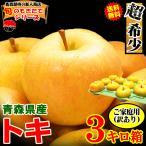 あすつく 送料無料 青森りんご 3kg箱 サンふじ ご家庭用 訳あり 鮮度抜群 青森 リンゴ 3キロ箱 大小様々
