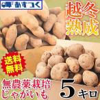 じゃがいも 5kg  送料無料 ワケアリ ジャガイモ 男爵芋 メークイン 訳あり 5キロ 越冬じゃがいも 無農薬栽培