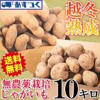 じゃがいも 10kg  送料無料 ワケアリ ジャガイモ 男爵芋 メークイン 訳あり 10キロ 越冬じゃがいも 無農薬栽培