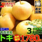 りんご 3kg クール便対応 家庭用 青森県産りんご 訳あり サンふじ 3キロ箱 約7玉〜14玉入り