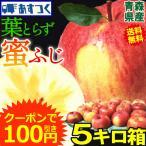 りんご 5kg サンふじとシナノゴールドのミックス 家庭用 クール便 青森県産りんご 訳あり 5キロ箱 約11玉〜25玉入り