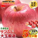 りんご 5kg箱 大玉厳選 送料無料 訳あり 青森 リンゴ 5キロ箱 家庭用