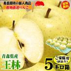あすつく 青森 りんご 王林 5kg箱 ご家庭用 クール便対応 幸せを運ぶ甘さと芳醇な香り 王林 ご家庭用 林檎 5キロ箱