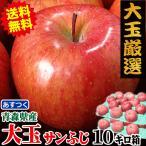 りんご 10kg箱 大玉厳選 送料無料 訳あり 青森 リンゴ 10キロ箱 家庭用