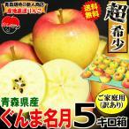 【予約】送料無料 りんご 5kg箱 ぐんま名月 ご家庭用 訳ありリンゴ 鮮度抜群 青森 リンゴ 5キロ箱