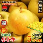 クーポンで100円引き!あすつく 送料無料 青森りんご 5kg箱 トキ ご家庭用 訳ありリンゴ 鮮度抜群 青森 リンゴ 5キロ箱
