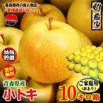 クーポンで200円引き!あすつく 送料無料 りんご 10kg箱 トキ ご家庭用 訳ありリンゴ 鮮度抜群 青森 リンゴ 10キロ箱