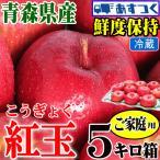 あすつく 青森りんご 5kg箱 紅玉 ご家庭用 訳あり【クール便対応】鮮度抜群 青森 リンゴ 5キロ箱 大小様々 常温便送料無料